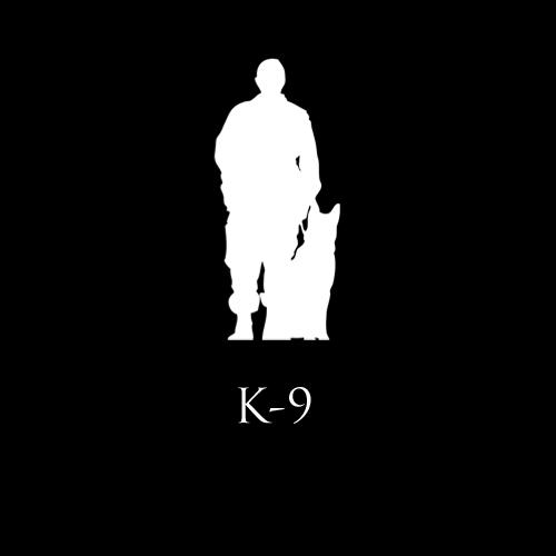 Schäferhund, K9, Objektschutz, Aus, Weiterbildung, Diensthundewesen